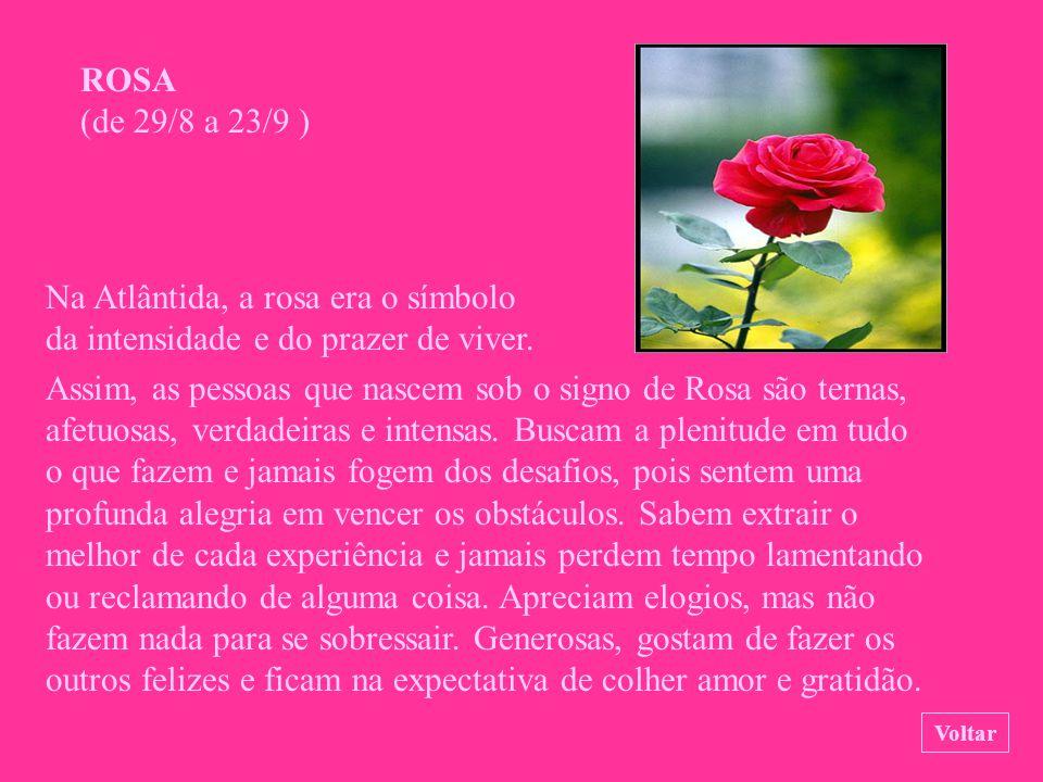 ROSA (de 29/8 a 23/9 )