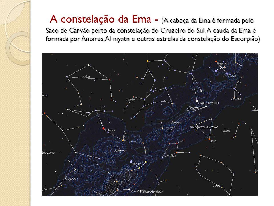 A constelação da Ema - (A cabeça da Ema é formada pelo Saco de Carvão perto da constelação do Cruzeiro do Sul.