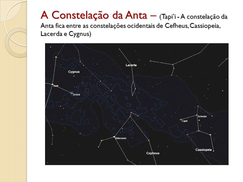 A Constelação da Anta – (Tapi'i - A constelação da Anta fica entre as constelações ocidentais de Cefheus, Cassiopeia, Lacerda e Cygnus)