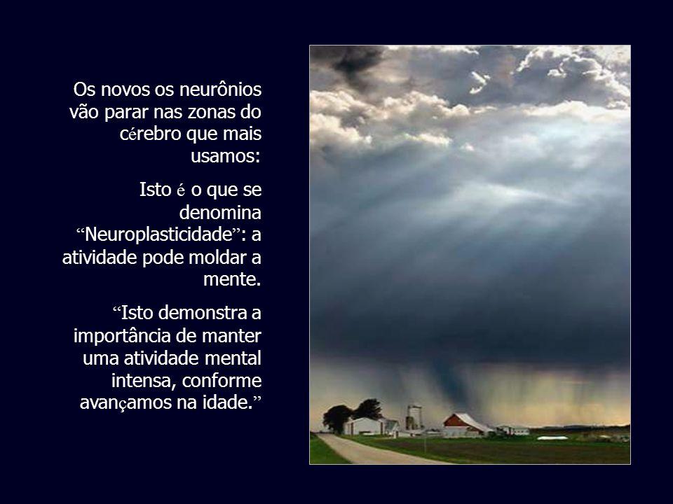 Os novos os neurônios vão parar nas zonas do cérebro que mais usamos: