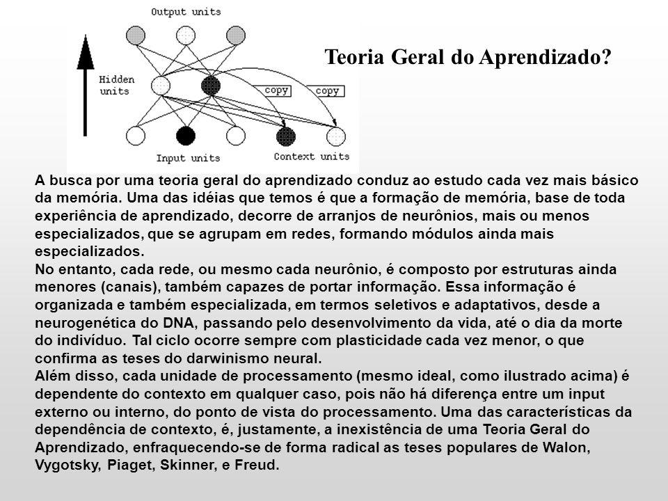 Teoria Geral do Aprendizado