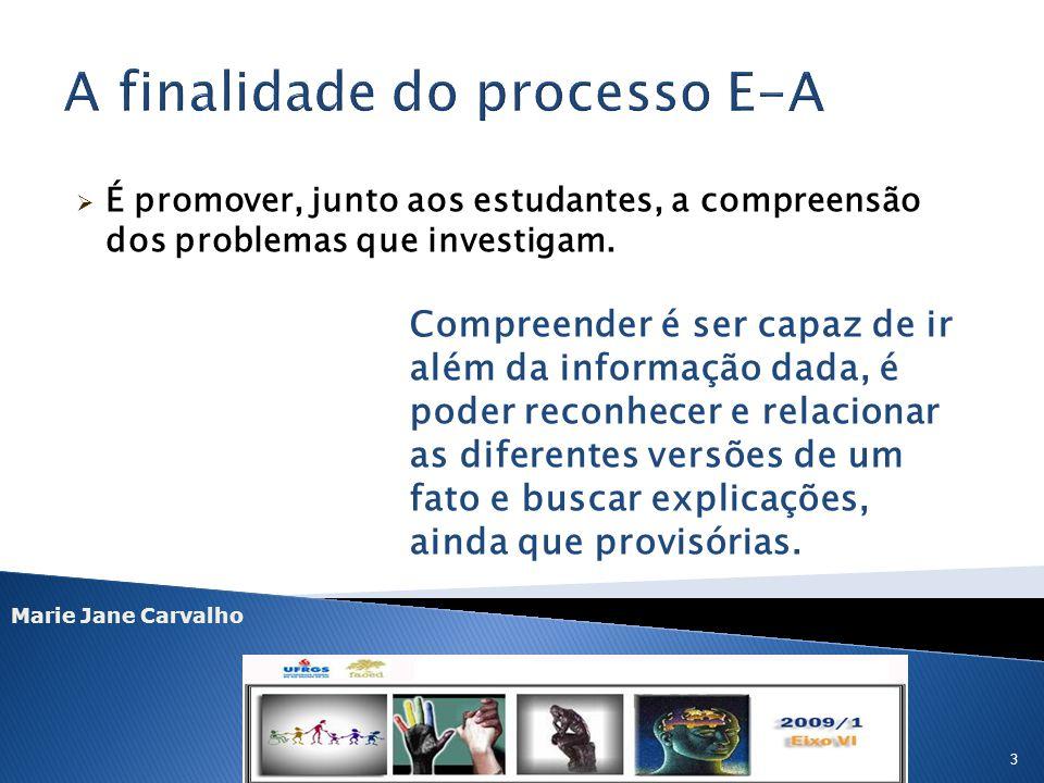 A finalidade do processo E-A