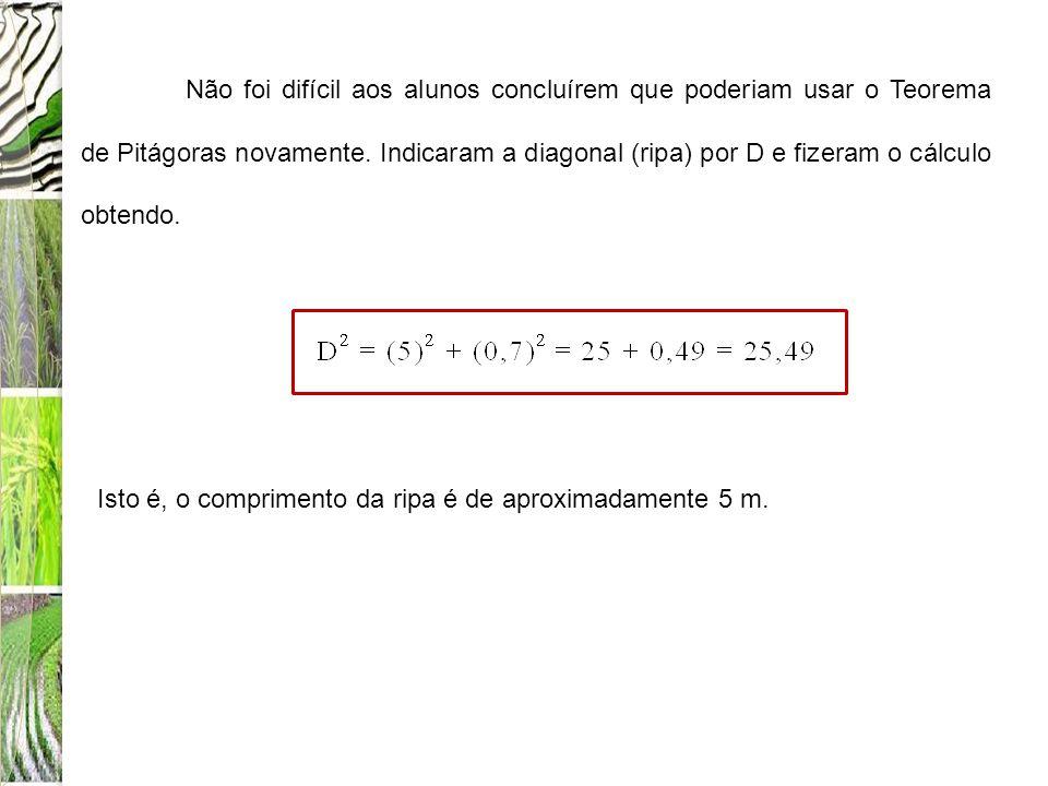 Não foi difícil aos alunos concluírem que poderiam usar o Teorema de Pitágoras novamente. Indicaram a diagonal (ripa) por D e fizeram o cálculo obtendo.
