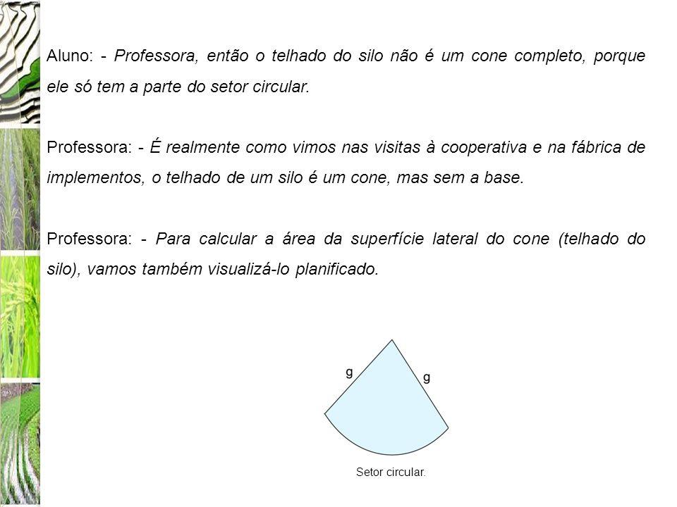 Aluno: - Professora, então o telhado do silo não é um cone completo, porque ele só tem a parte do setor circular.