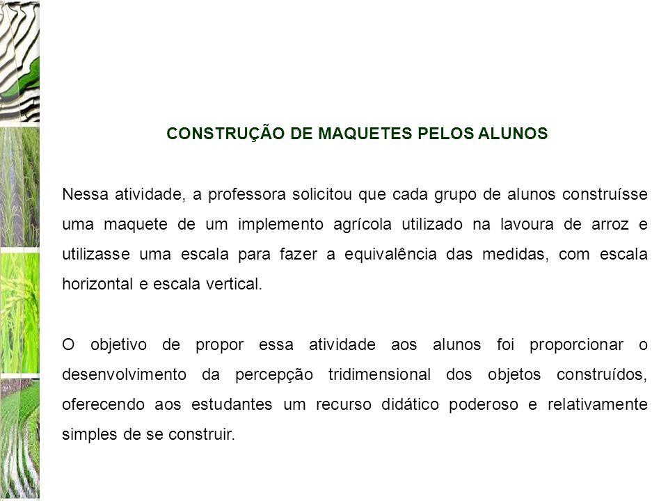 CONSTRUÇÃO DE MAQUETES PELOS ALUNOS