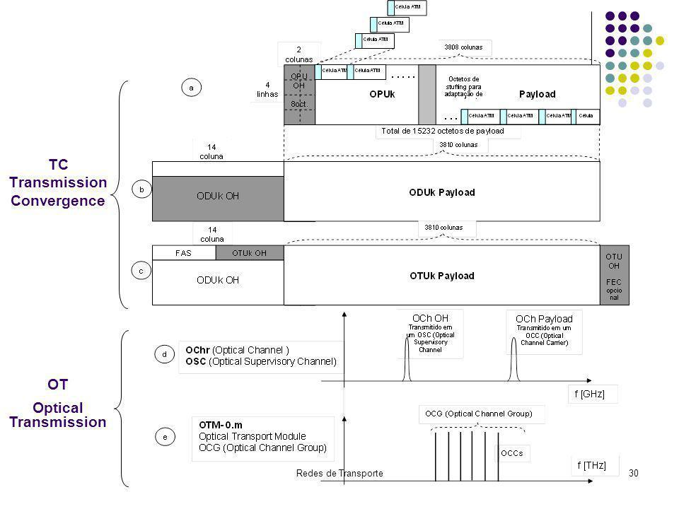 TC Transmission Convergence