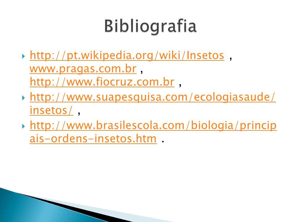 Bibliografia http://pt.wikipedia.org/wiki/Insetos , www.pragas.com.br , http://www.fiocruz.com.br ,