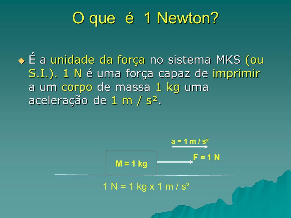 O que é 1 Newton