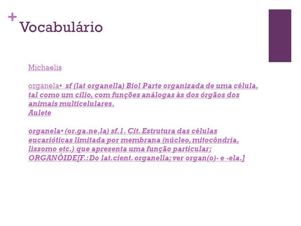 Vocabulário Michaelis