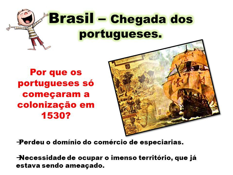 Brasil – Chegada dos portugueses.