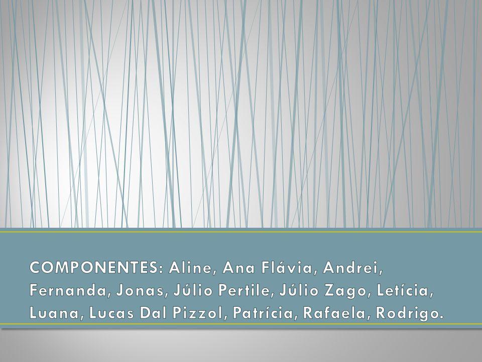 COMPONENTES: Aline, Ana Flávia, Andrei, Fernanda, Jonas, Júlio Pertile, Júlio Zago, Letícia, Luana, Lucas Dal Pizzol, Patrícia, Rafaela, Rodrigo.