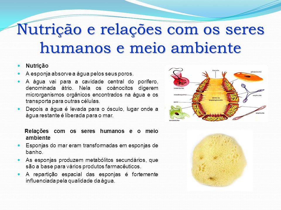 Nutrição e relações com os seres humanos e meio ambiente