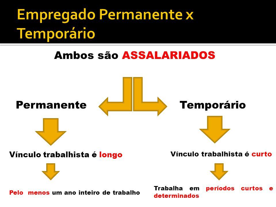 Empregado Permanente x Temporário