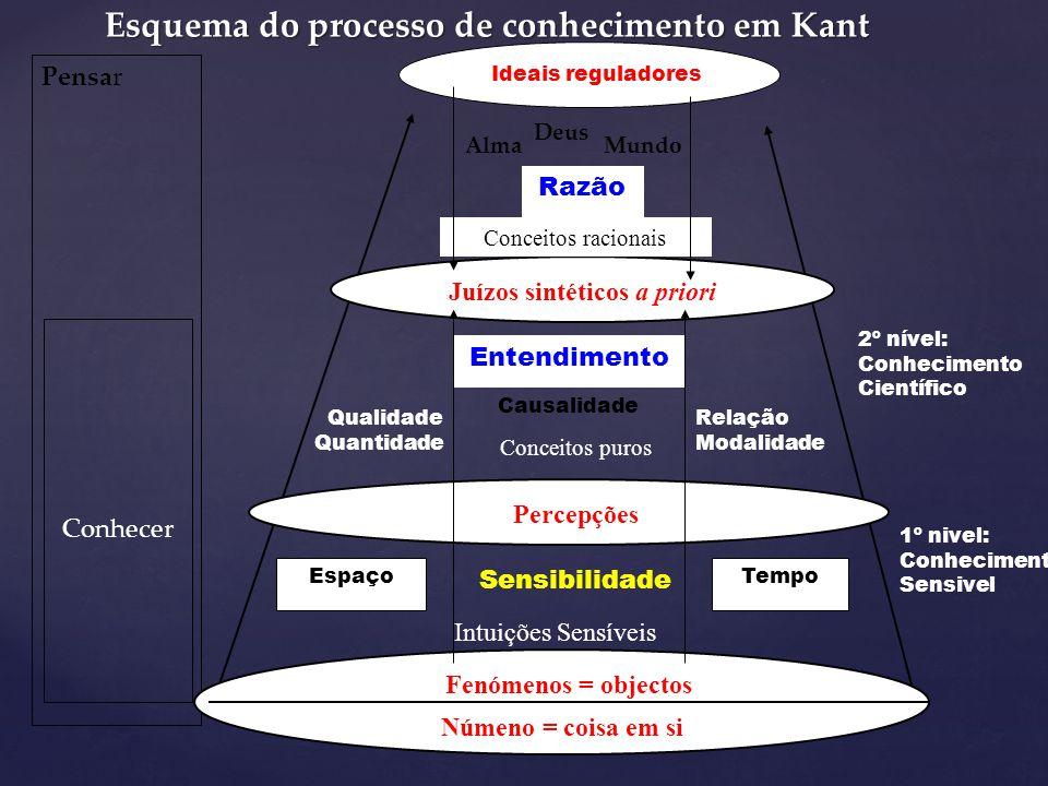 Esquema do processo de conhecimento em Kant
