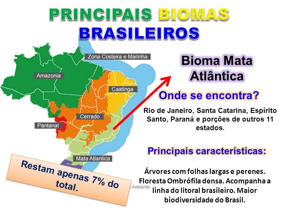 PRINCIPAIS BIOMAS BRASILEIROS Restam apenas 7% do total.