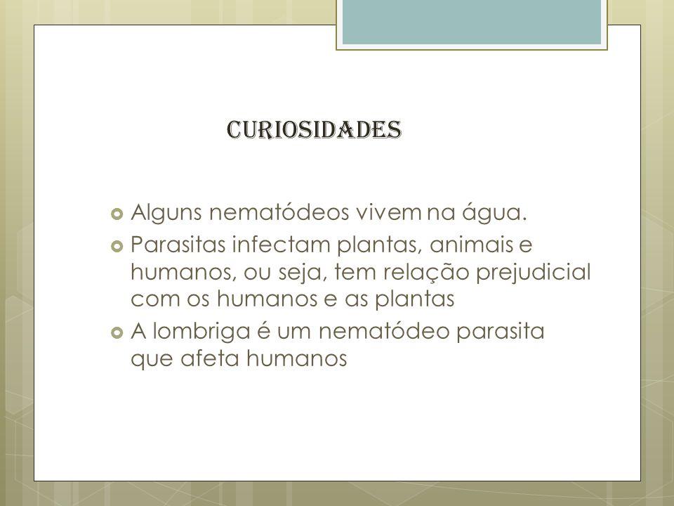 Curiosidades Alguns nematódeos vivem na água.