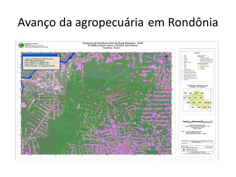Avanço da agropecuária em Rondônia