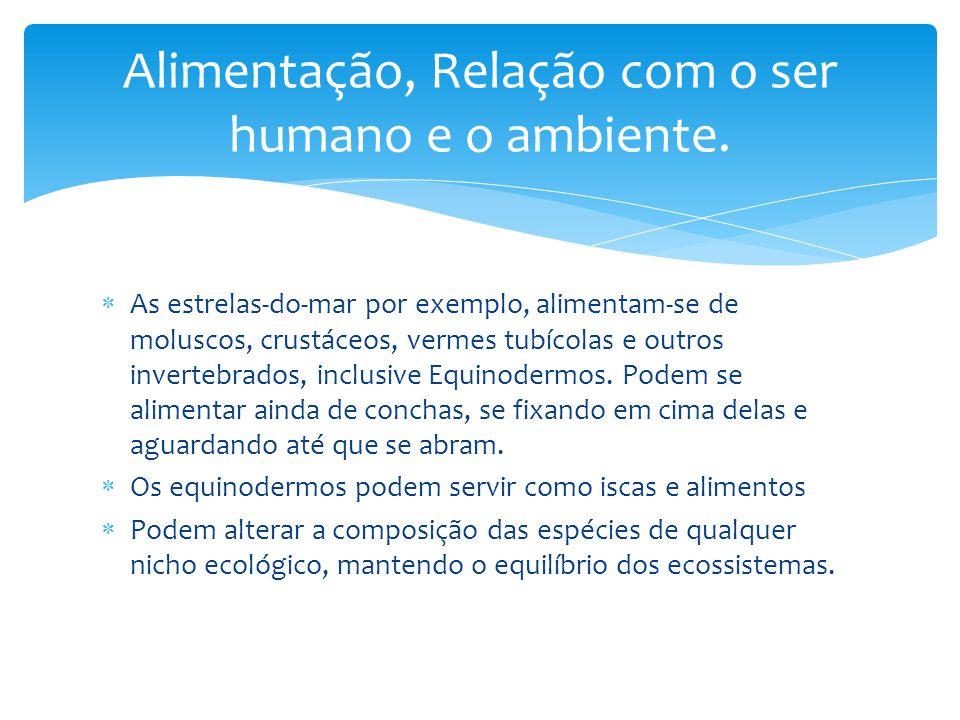 Alimentação, Relação com o ser humano e o ambiente.