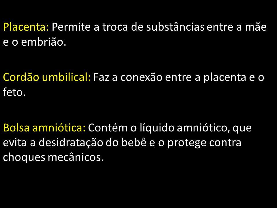 Placenta: Permite a troca de substâncias entre a mãe e o embrião.