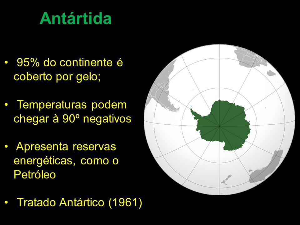 Antártida 95% do continente é coberto por gelo;