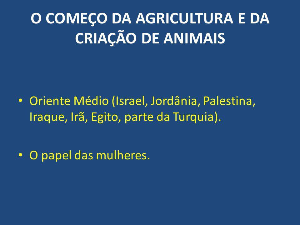 O COMEÇO DA AGRICULTURA E DA CRIAÇÃO DE ANIMAIS