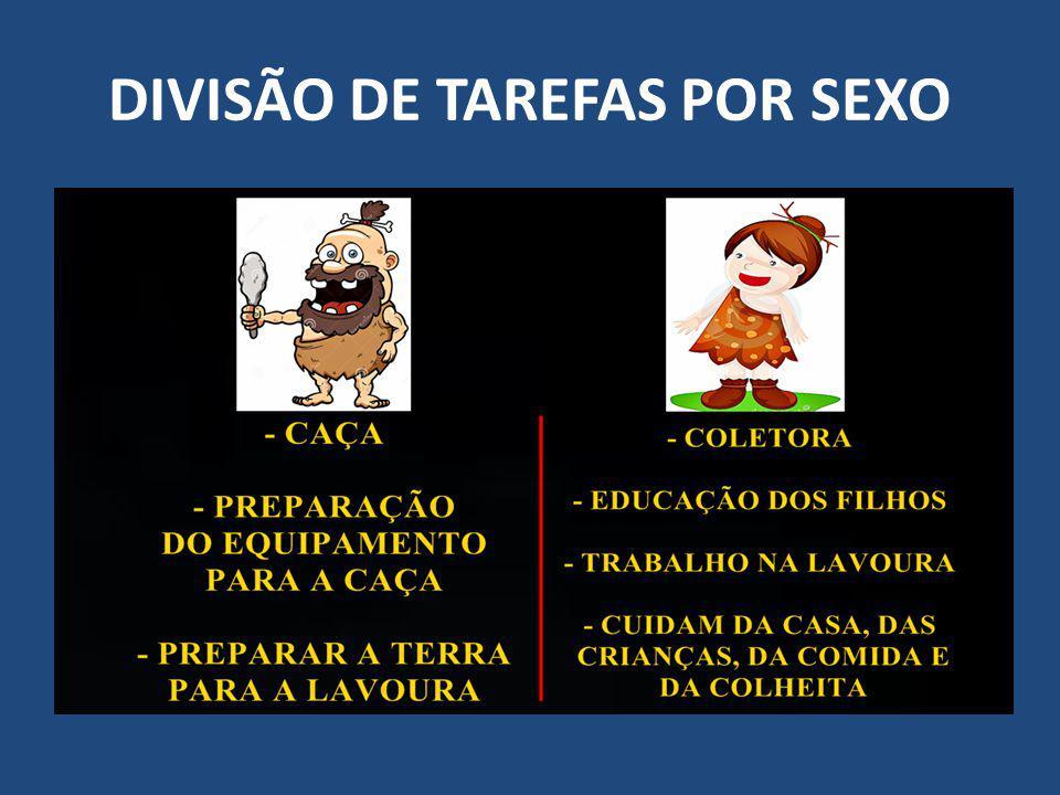 DIVISÃO DE TAREFAS POR SEXO