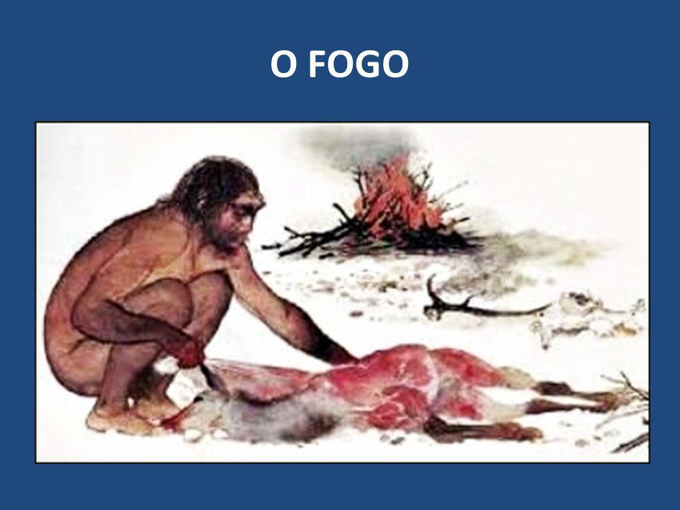 O FOGO