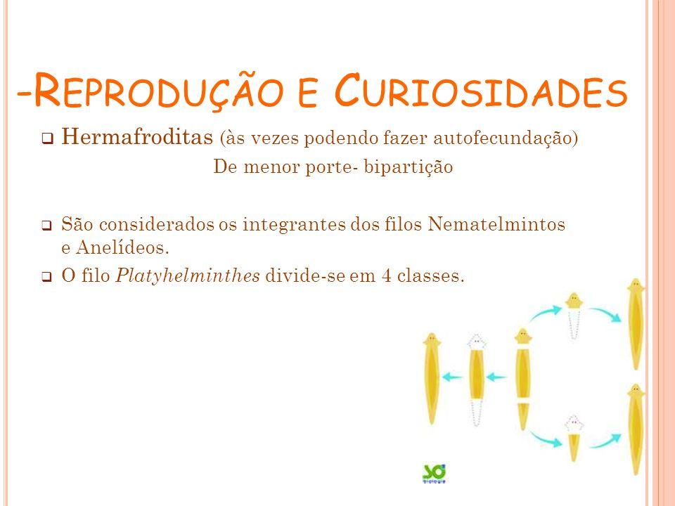 -Reprodução e Curiosidades
