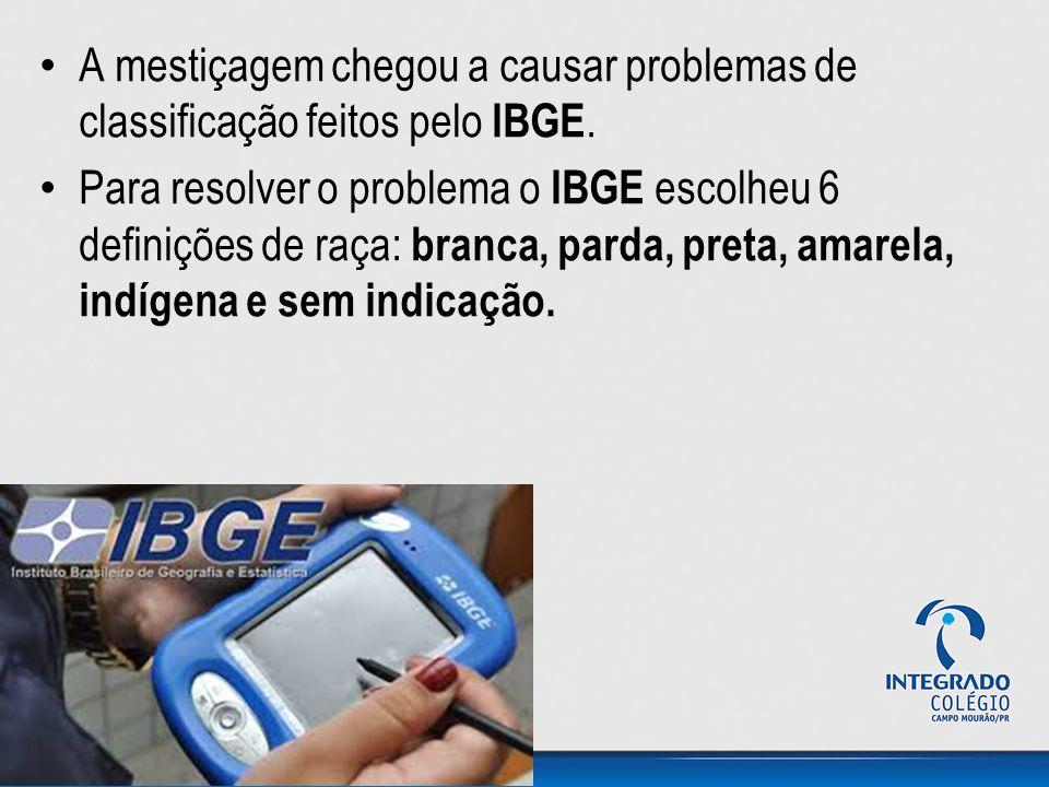 A mestiçagem chegou a causar problemas de classificação feitos pelo IBGE.