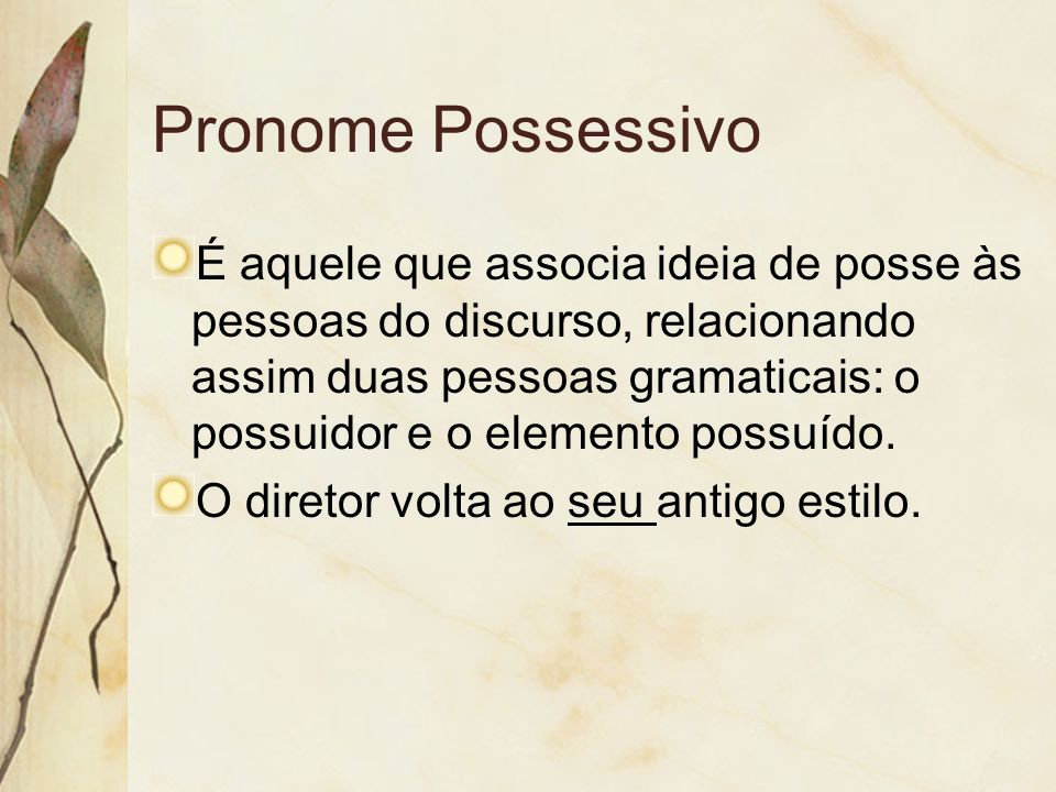 Pronome Possessivo