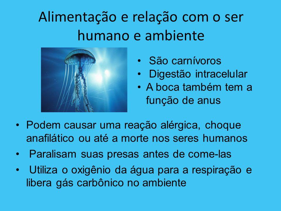 Alimentação e relação com o ser humano e ambiente