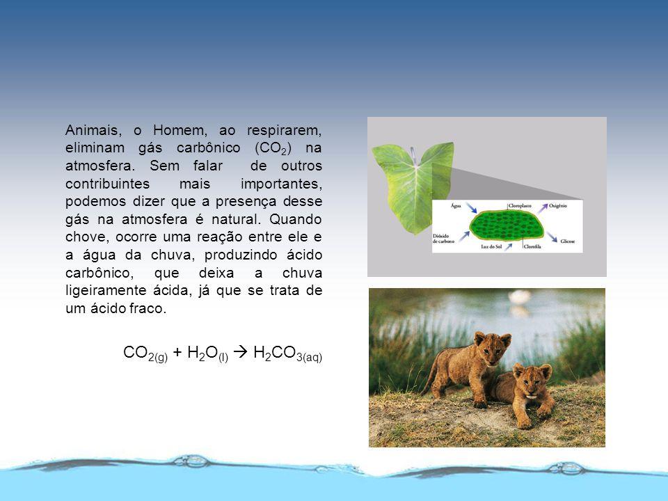 Animais, o Homem, ao respirarem, eliminam gás carbônico (CO2) na atmosfera. Sem falar de outros contribuintes mais importantes, podemos dizer que a presença desse gás na atmosfera é natural. Quando chove, ocorre uma reação entre ele e a água da chuva, produzindo ácido carbônico, que deixa a chuva ligeiramente ácida, já que se trata de um ácido fraco.