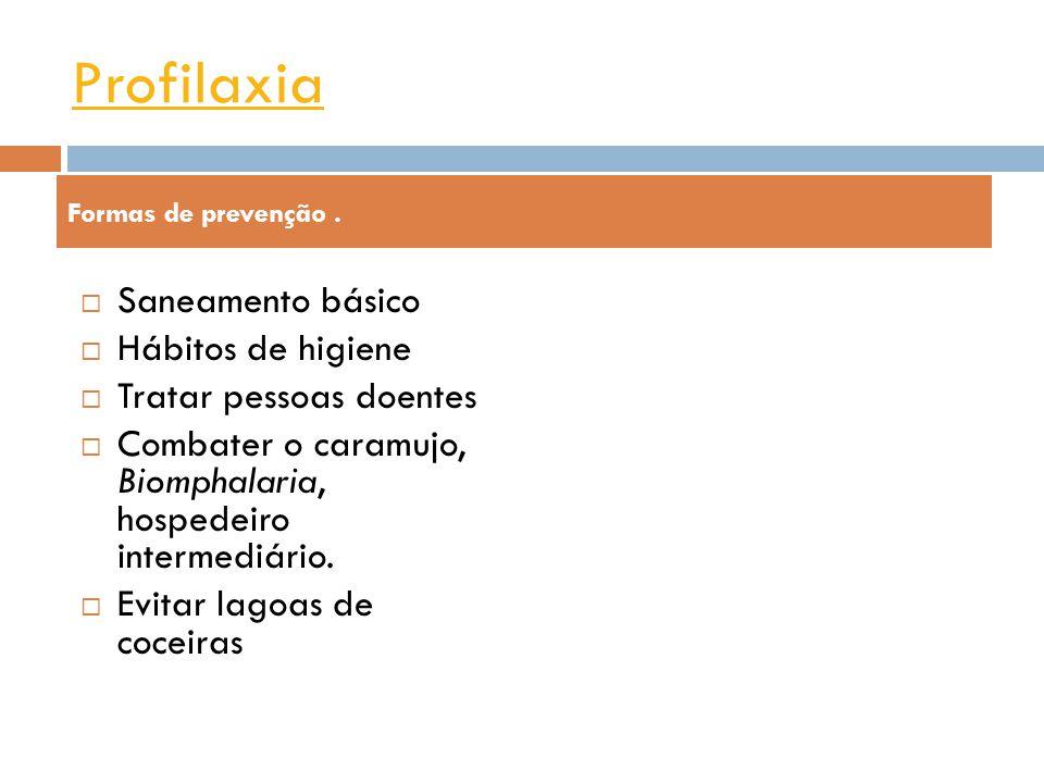 Profilaxia Saneamento básico Hábitos de higiene Tratar pessoas doentes