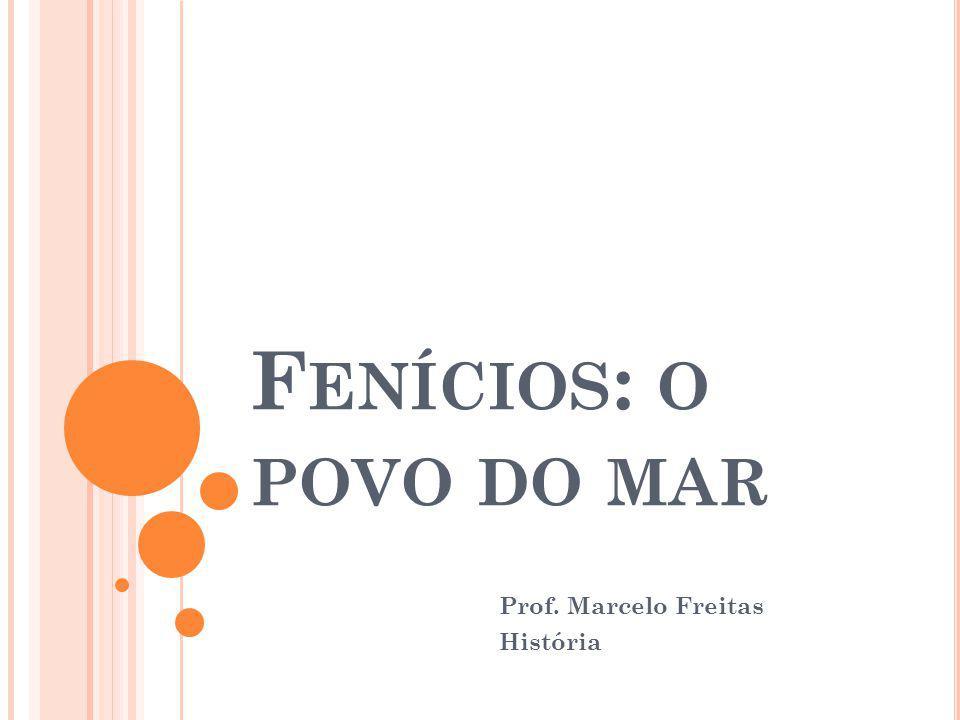 Prof. Marcelo Freitas História