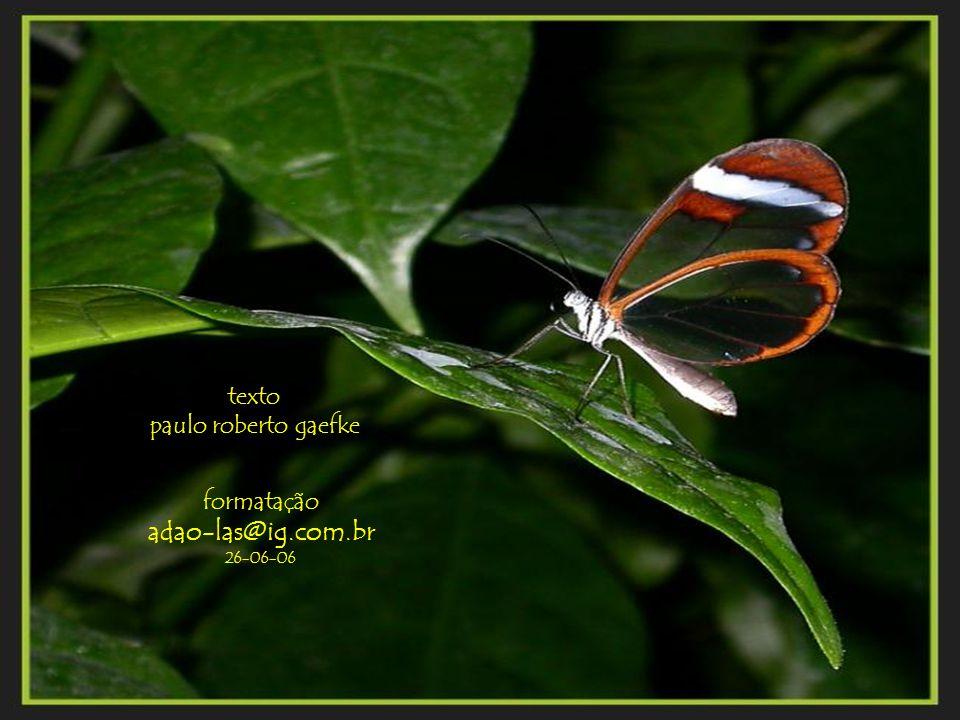 texto paulo roberto gaefke formatação adao-las@ig.com.br 26-06-06