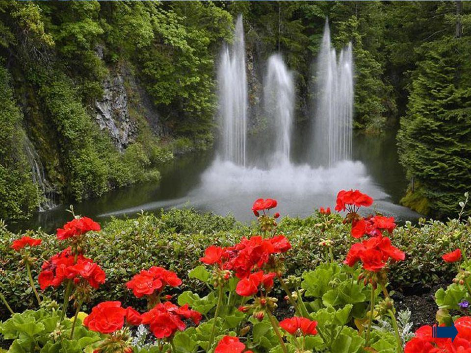 As natureza, em sua simplicidade, mostra-nos a pujança da vida,