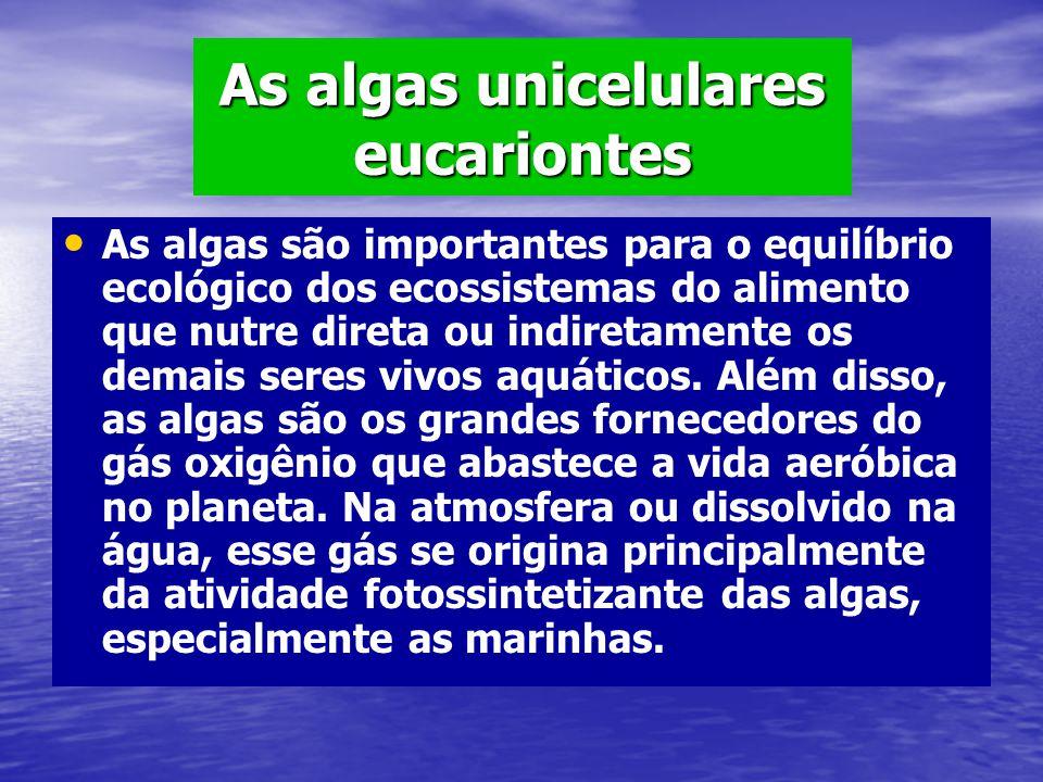 As algas unicelulares eucariontes