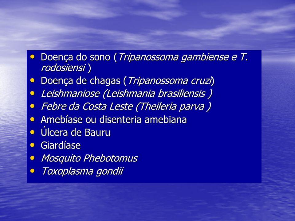 Doença do sono (Tripanossoma gambiense e T. rodosiensi )