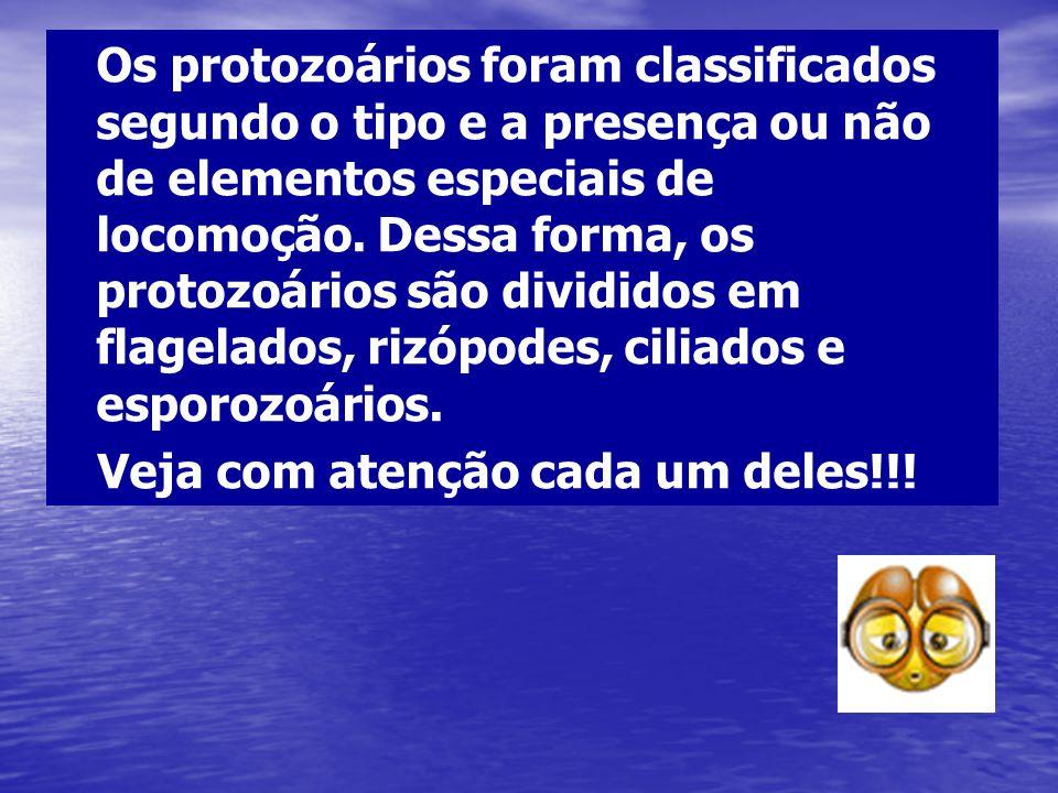 Os protozoários foram classificados segundo o tipo e a presença ou não de elementos especiais de locomoção. Dessa forma, os protozoários são divididos em flagelados, rizópodes, ciliados e esporozoários.