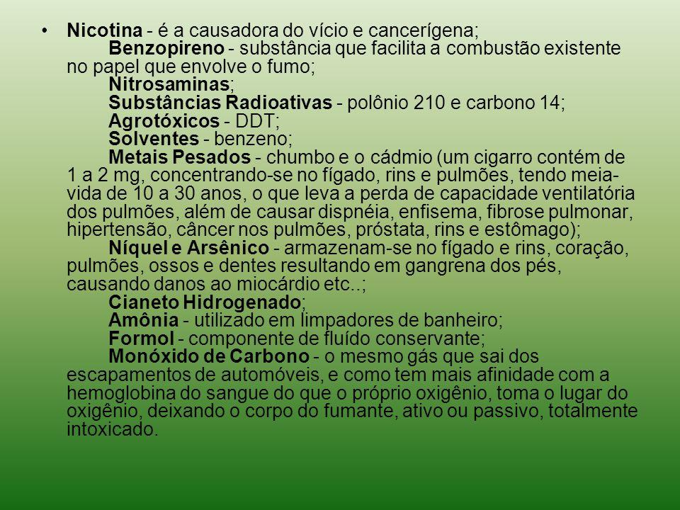 Nicotina - é a causadora do vício e cancerígena; Benzopireno - substância que facilita a combustão existente no papel que envolve o fumo; Nitrosaminas; Substâncias Radioativas - polônio 210 e carbono 14; Agrotóxicos - DDT; Solventes - benzeno; Metais Pesados - chumbo e o cádmio (um cigarro contém de 1 a 2 mg, concentrando-se no fígado, rins e pulmões, tendo meia-vida de 10 a 30 anos, o que leva a perda de capacidade ventilatória dos pulmões, além de causar dispnéia, enfisema, fibrose pulmonar, hipertensão, câncer nos pulmões, próstata, rins e estômago); Níquel e Arsênico - armazenam-se no fígado e rins, coração, pulmões, ossos e dentes resultando em gangrena dos pés, causando danos ao miocárdio etc..; Cianeto Hidrogenado; Amônia - utilizado em limpadores de banheiro; Formol - componente de fluído conservante; Monóxido de Carbono - o mesmo gás que sai dos escapamentos de automóveis, e como tem mais afinidade com a hemoglobina do sangue do que o próprio oxigênio, toma o lugar do oxigênio, deixando o corpo do fumante, ativo ou passivo, totalmente intoxicado.