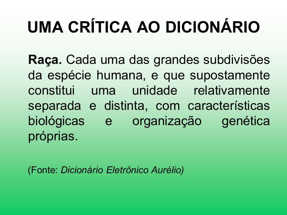 UMA CRÍTICA AO DICIONÁRIO