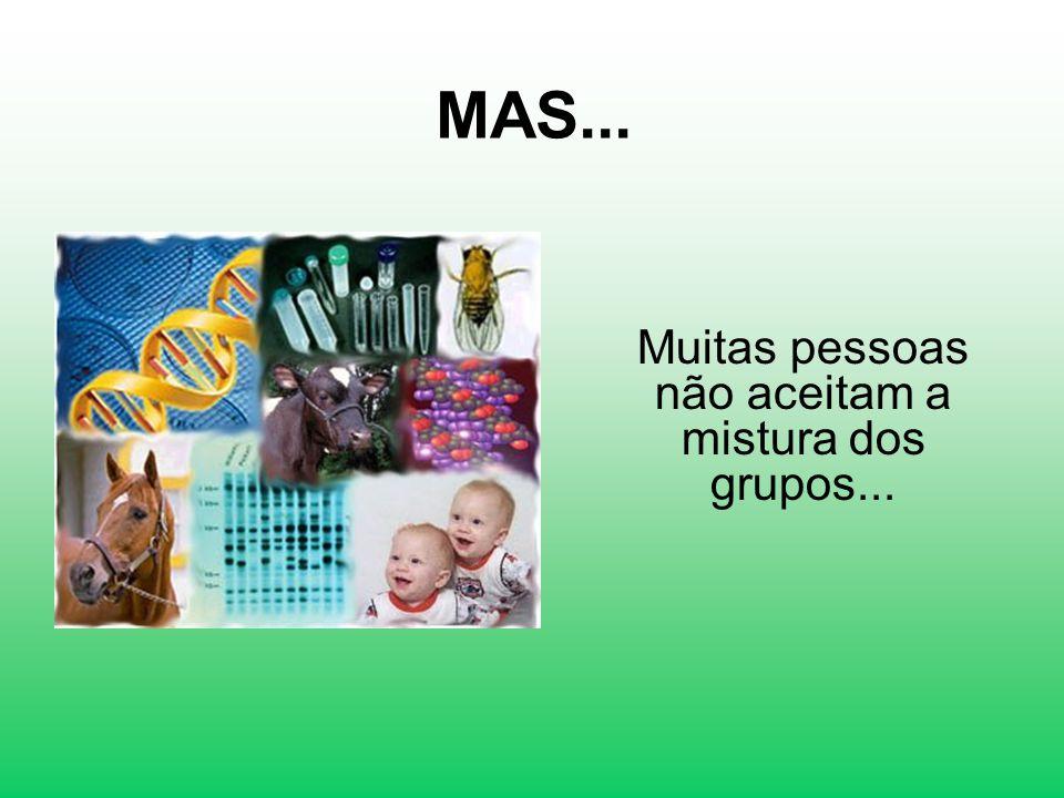 Muitas pessoas não aceitam a mistura dos grupos...