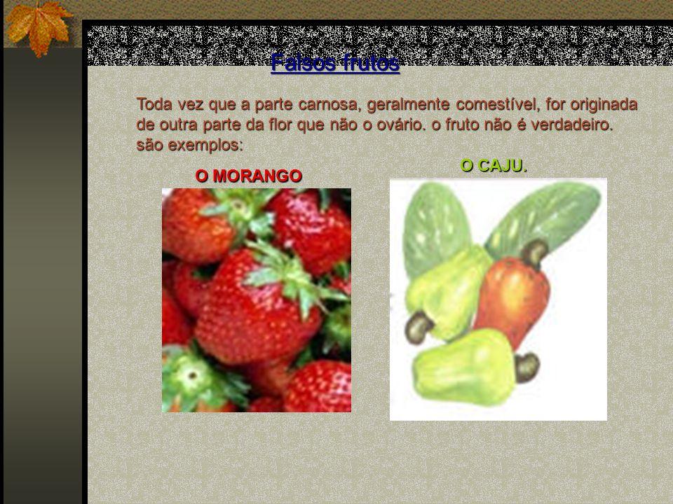 Falsos frutos Toda vez que a parte carnosa, geralmente comestível, for originada de outra parte da flor que não o ovário. o fruto não é verdadeiro.