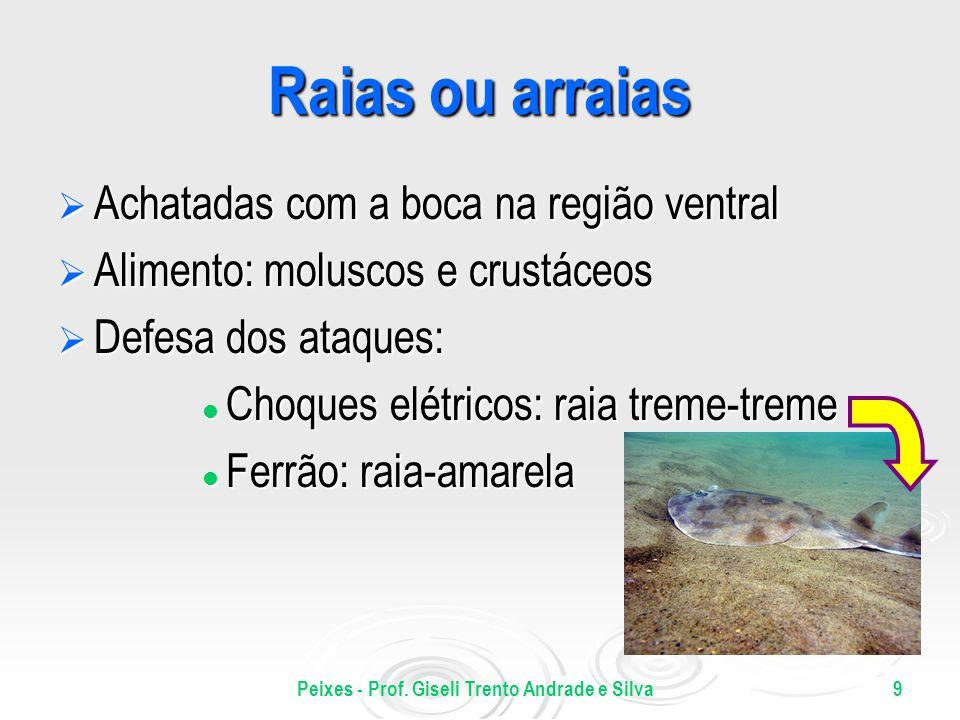 Peixes - Prof. Giseli Trento Andrade e Silva