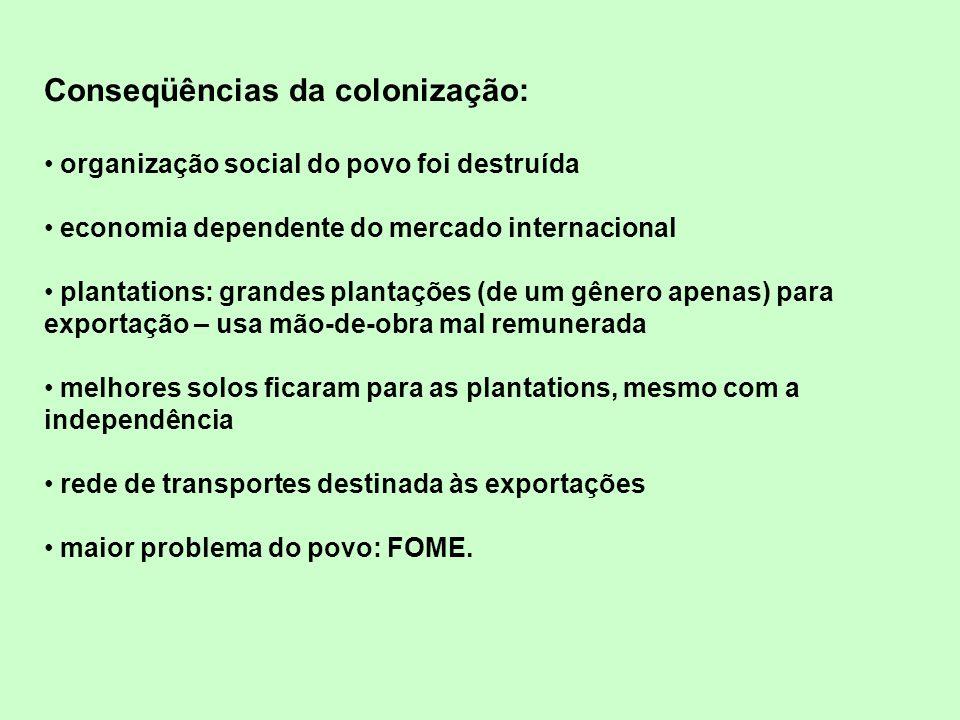 Conseqüências da colonização: