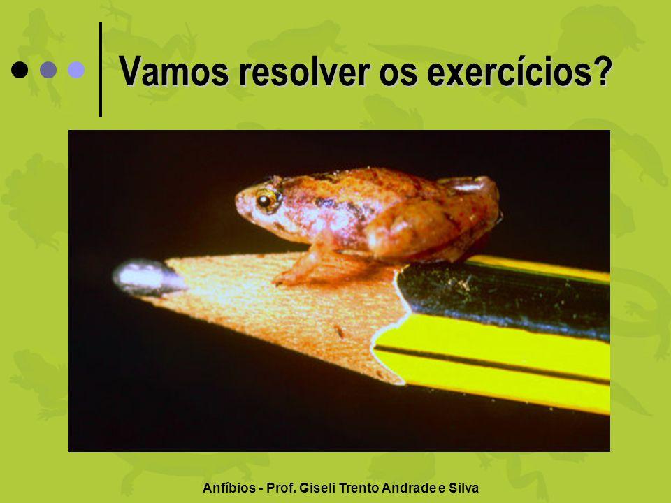 Vamos resolver os exercícios