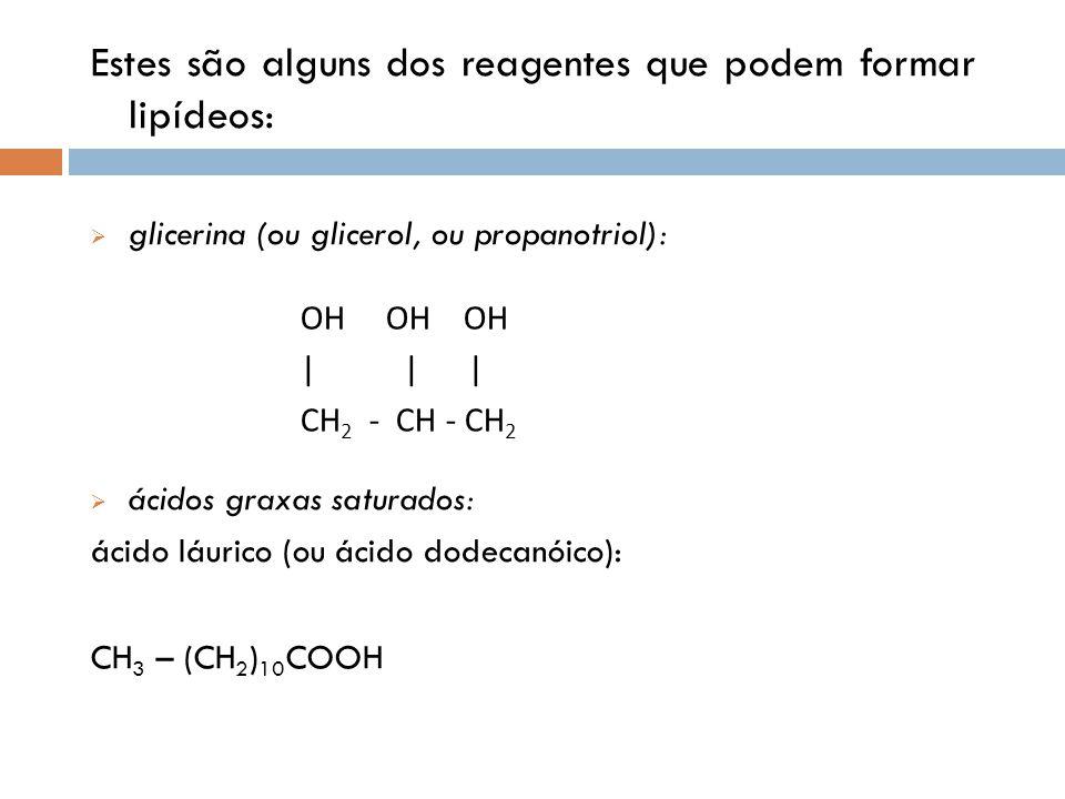 Estes são alguns dos reagentes que podem formar lipídeos: