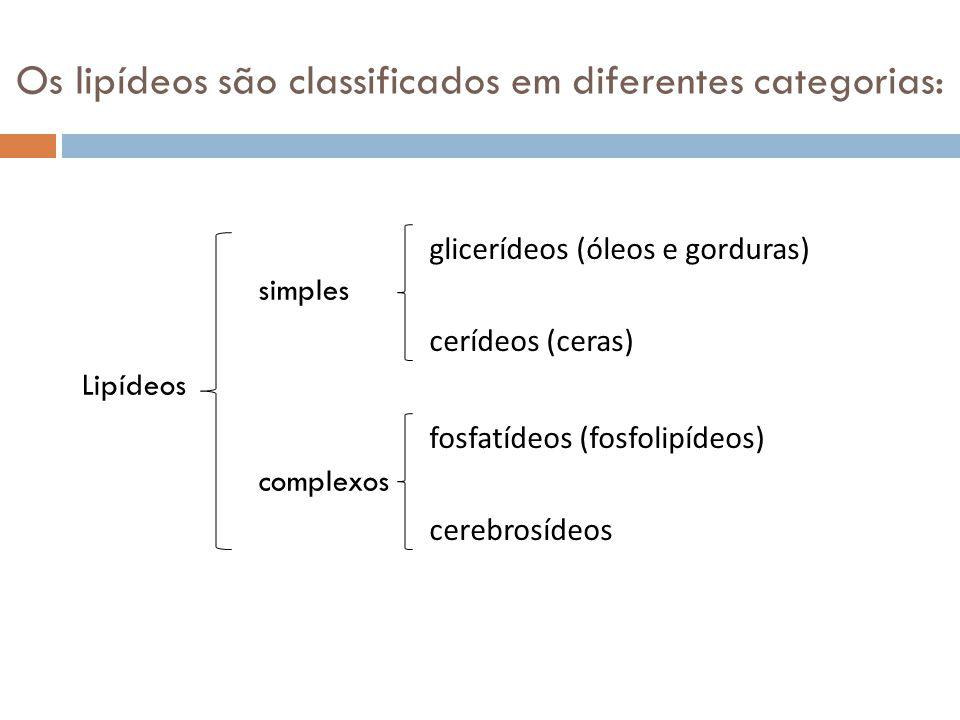 Os lipídeos são classificados em diferentes categorias: