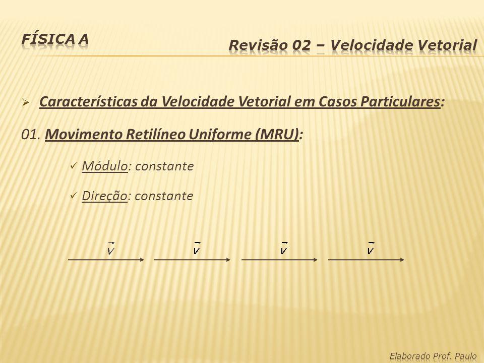 Características da Velocidade Vetorial em Casos Particulares: