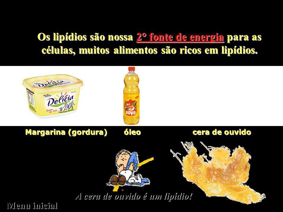 Os lipídios são nossa 2° fonte de energia para as células, muitos alimentos são ricos em lipídios.